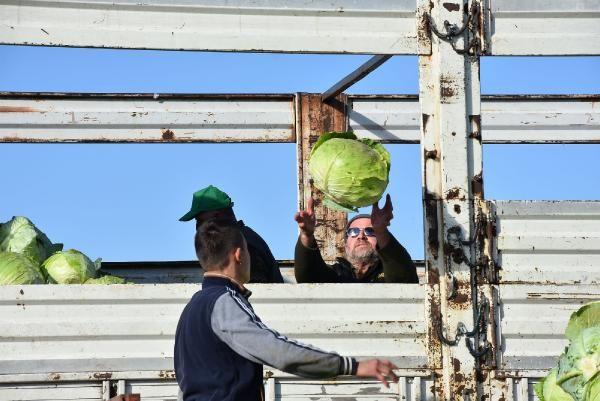 Lahana fiyatı üreticiden tüketiciye gidene kadar 4 kat artıyor -4