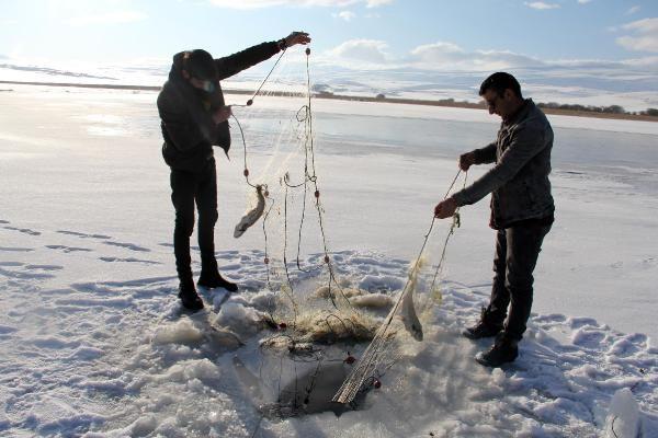 Buzla kaplanan Çıldır Gölü, 2020'de de gözde -6