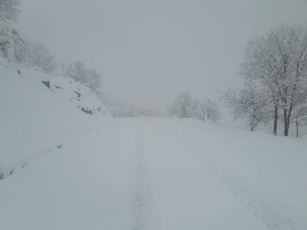 Bingöl'de 28 köy yolu kardan kapandı -1