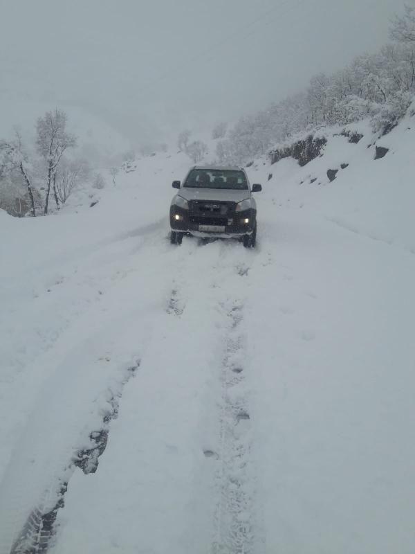 Bingöl'de 28 köy yolu kardan kapandı -2