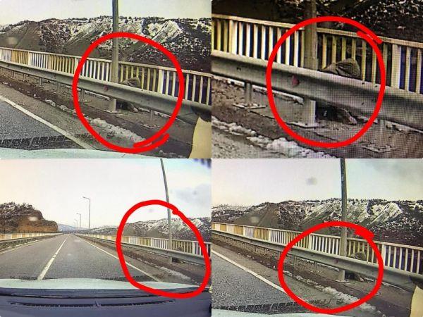 Kayıp Gülistan'ın olay günü köprüde görüntüsü çıktı -1