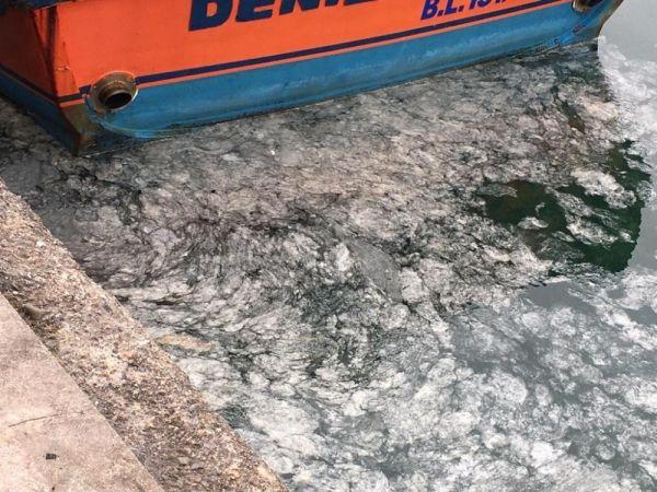 Çanakkale Boğazı'nda ortaya çıkan gizemli tabaka