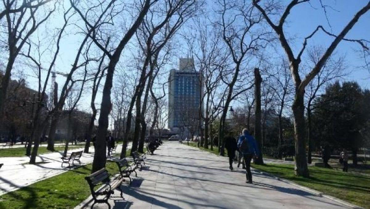 Ek fotoğraflar // Gezi Parkı'na 150 yeni ağaç dikiliyor -8