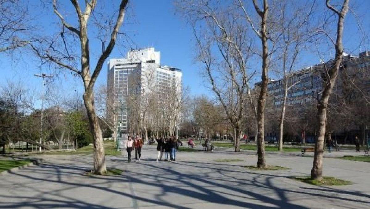 Ek fotoğraflar // Gezi Parkı'na 150 yeni ağaç dikiliyor -4