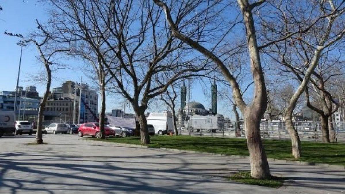 Ek fotoğraflar // Gezi Parkı'na 150 yeni ağaç dikiliyor -3