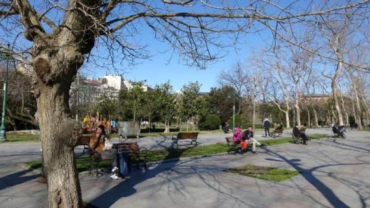 Ek fotoğraflar // Gezi Parkı'na 150 yeni ağaç dikiliyor -2
