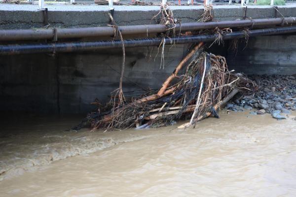Rize'deki yağışlarda son 91 yılın rekoru kırıldı #19
