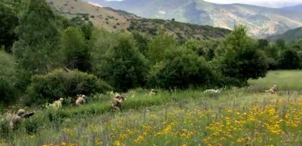 Erzurum'daki teröristlerin yakalanma hikayesi #3