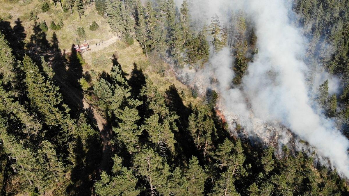 Kastamonu daki orman yangını 4 gündür söndürülemedi #4