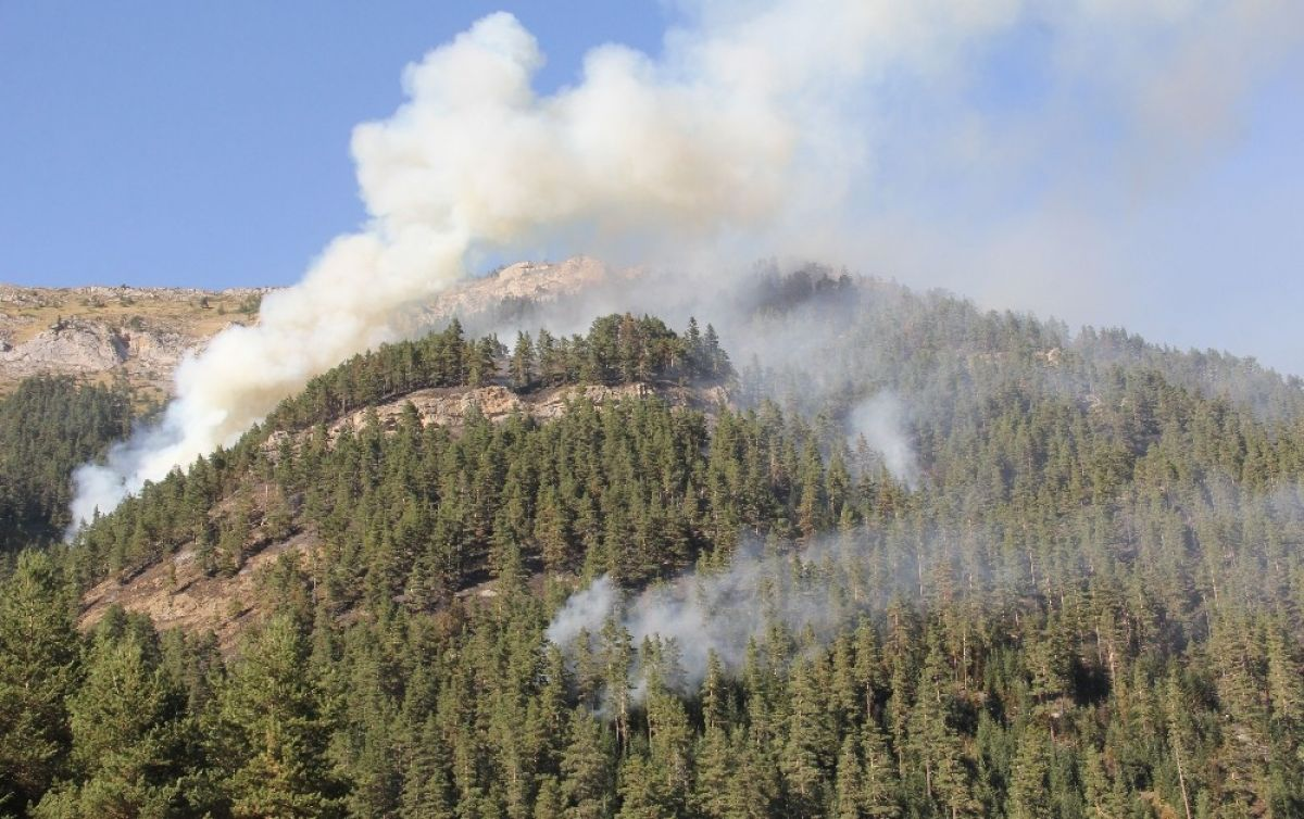 Kastamonu daki orman yangını 4 gündür söndürülemedi #3