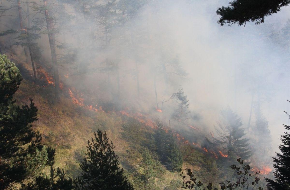 Kastamonu daki orman yangını 4 gündür söndürülemedi #6
