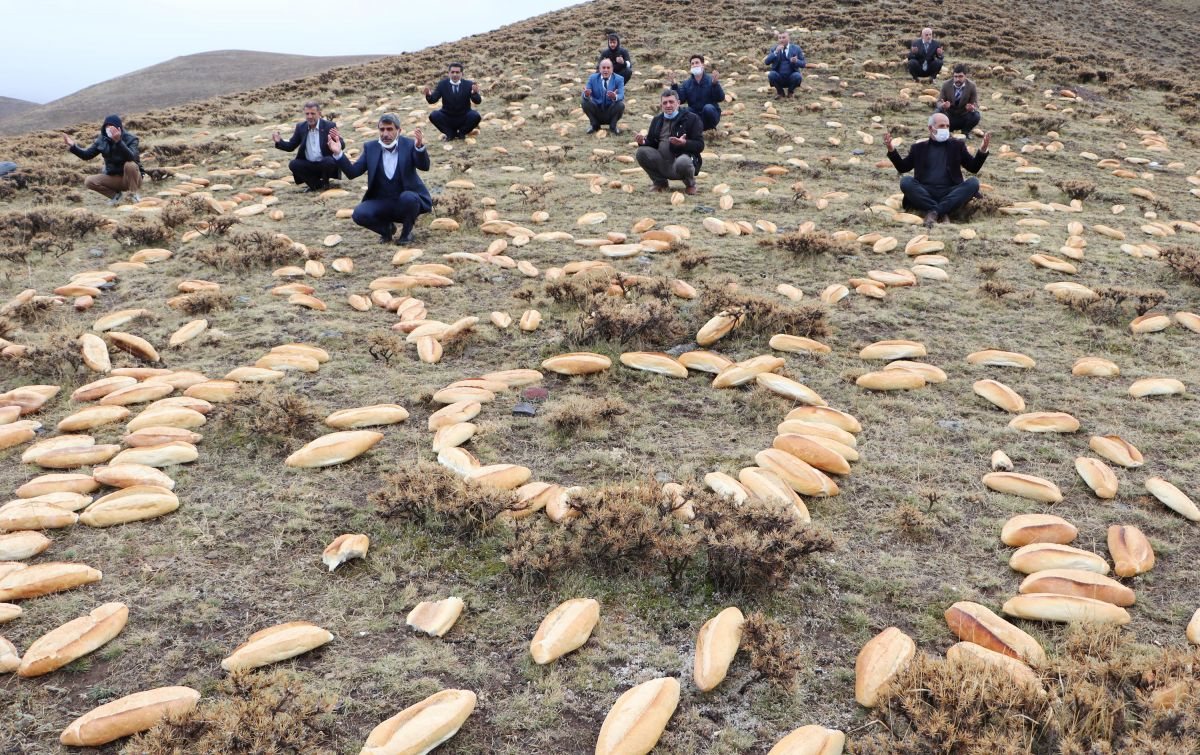 Erzurum da doğaya yine 2001 ekmek bıraktılar #3