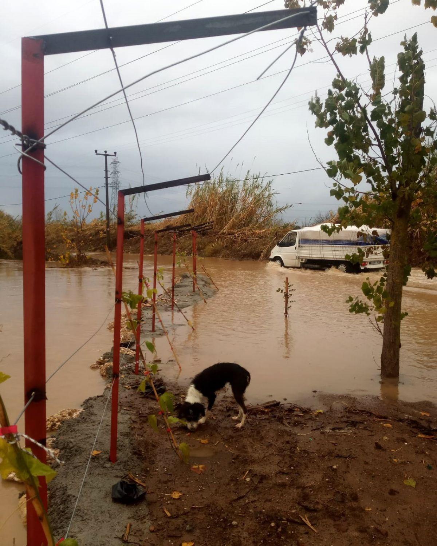 Antalya da sağanak yağış, su baskınına neden oldu #3