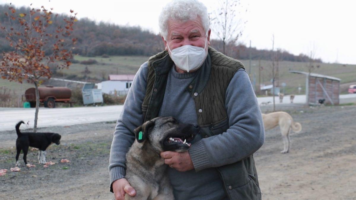 Samsun da sokak hayvanlarını tedavi etmek isteyen Fevzi Uyar, 71 yaşında veteriner oldu #2