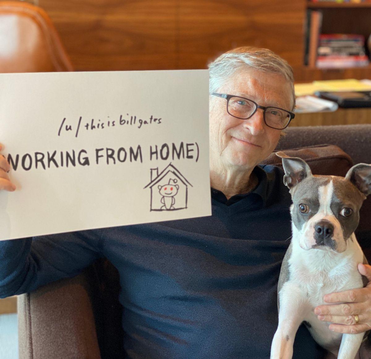 Bill Gates havacılık şirketi satın almak istiyor #2