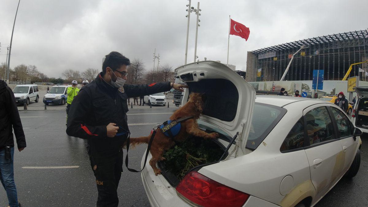 İstanbul da 2021 in ikinci Yeditepe Huzur denetimleri #5