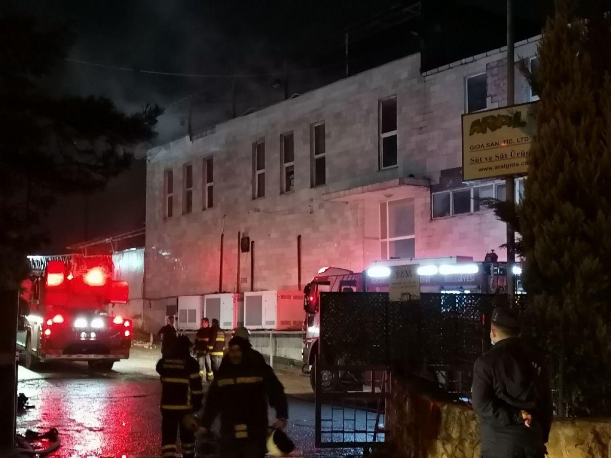 Kocaeli de süt fabrikasında yangın: 200 güvercin telef oldu #1