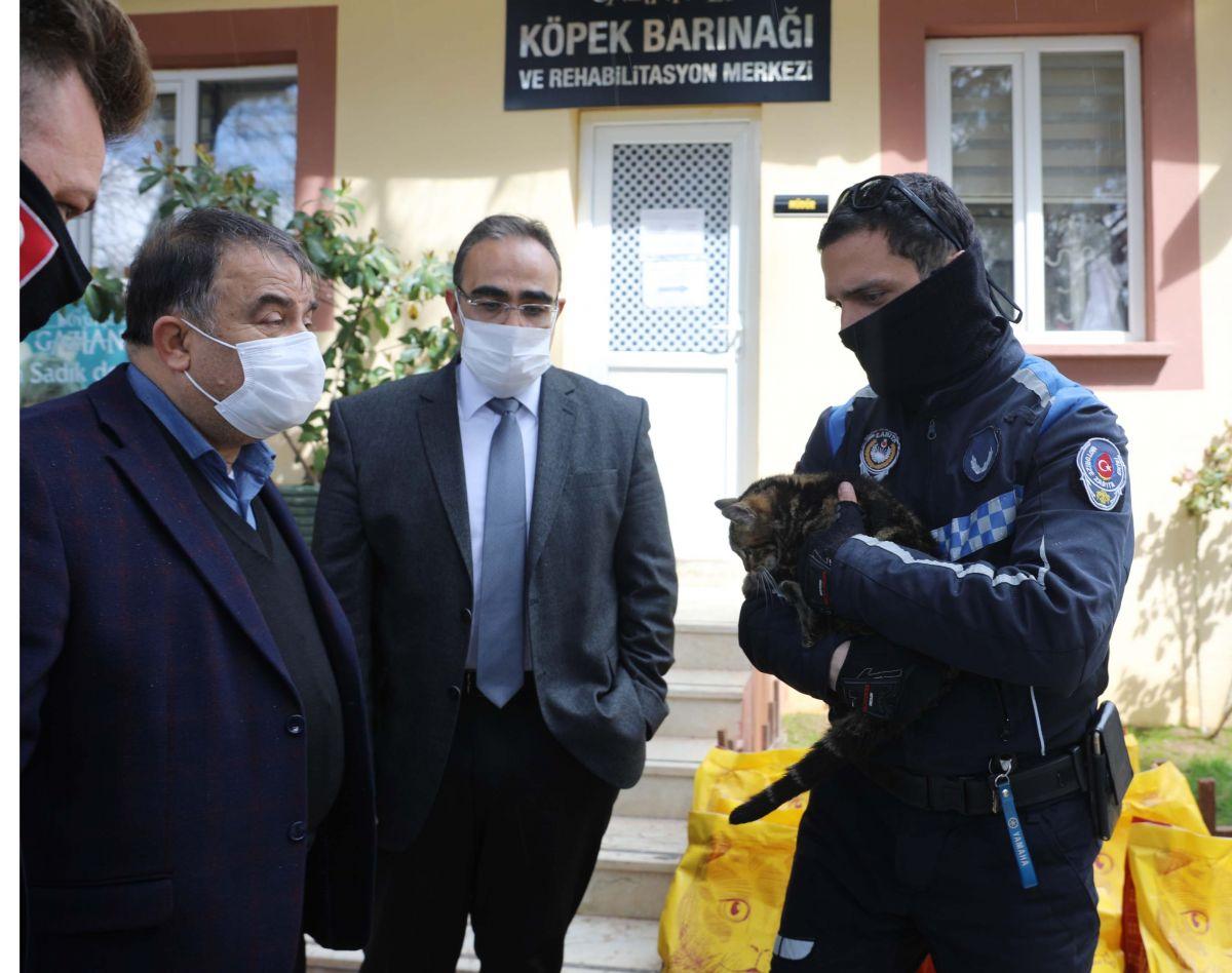 Gaziantep te kediyi çivili sopayla döven şahıs, mama karşılığında affedildi #10