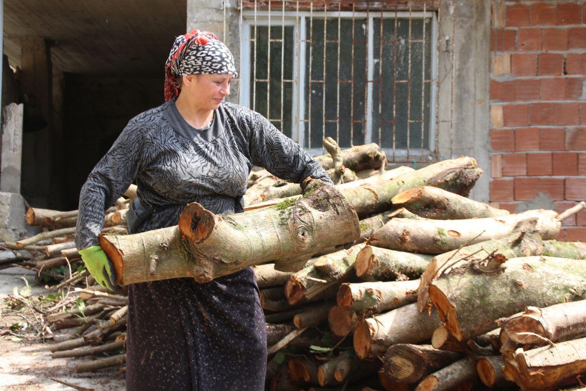 Doğu Karadeniz'de çay üreticilerine kısıtlama muafiyeti #4