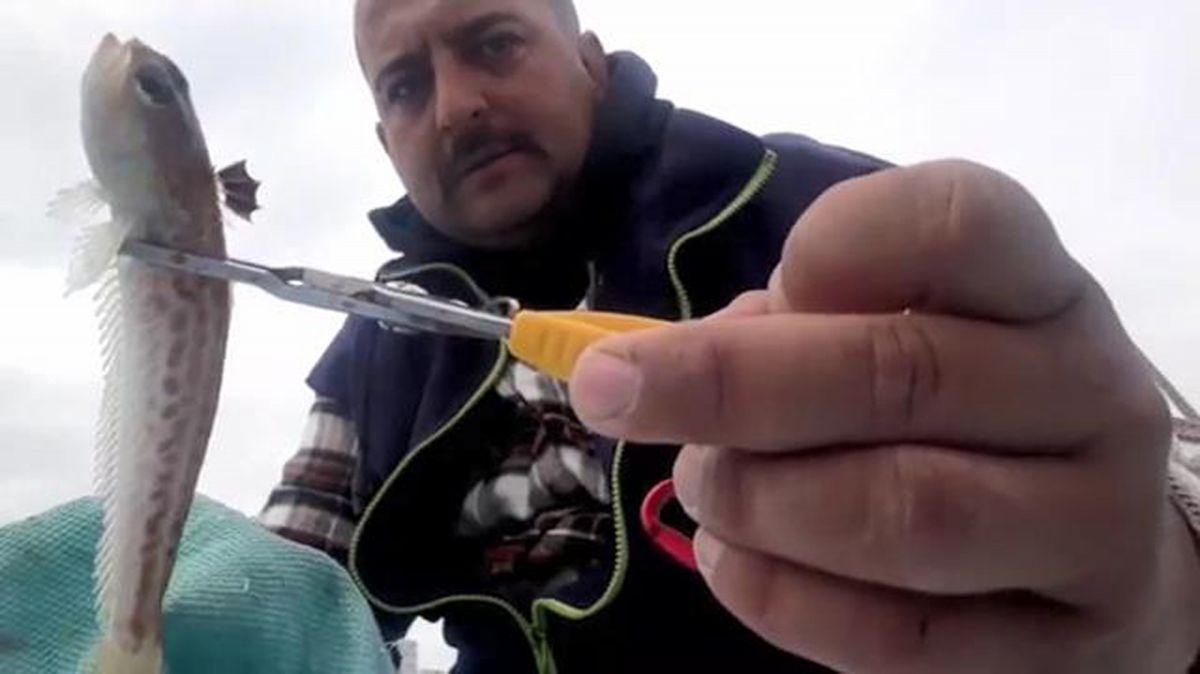 Antalya da zehirli trakonya balığına karşı ayakkabı giyin uyarısı #3