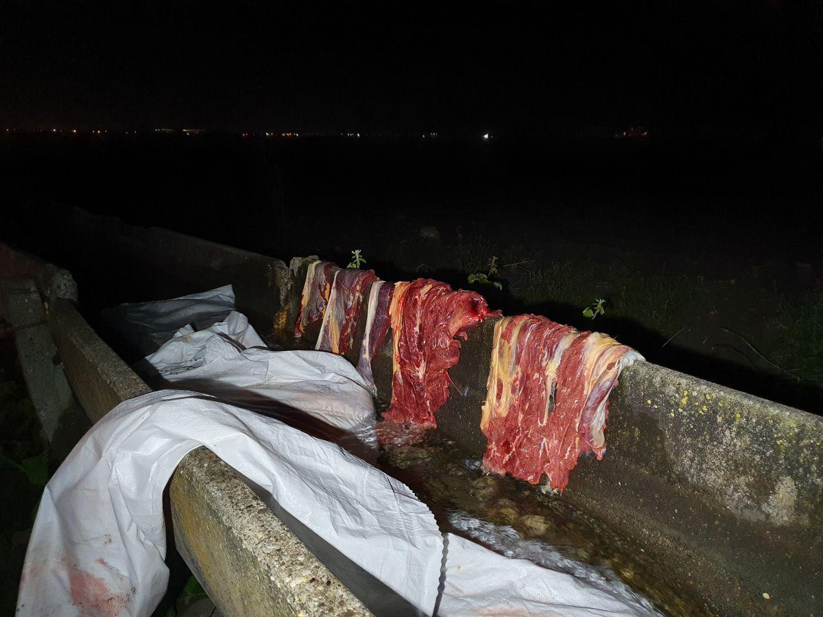 Adana da, at kesimi yapanlara suçüstü #2