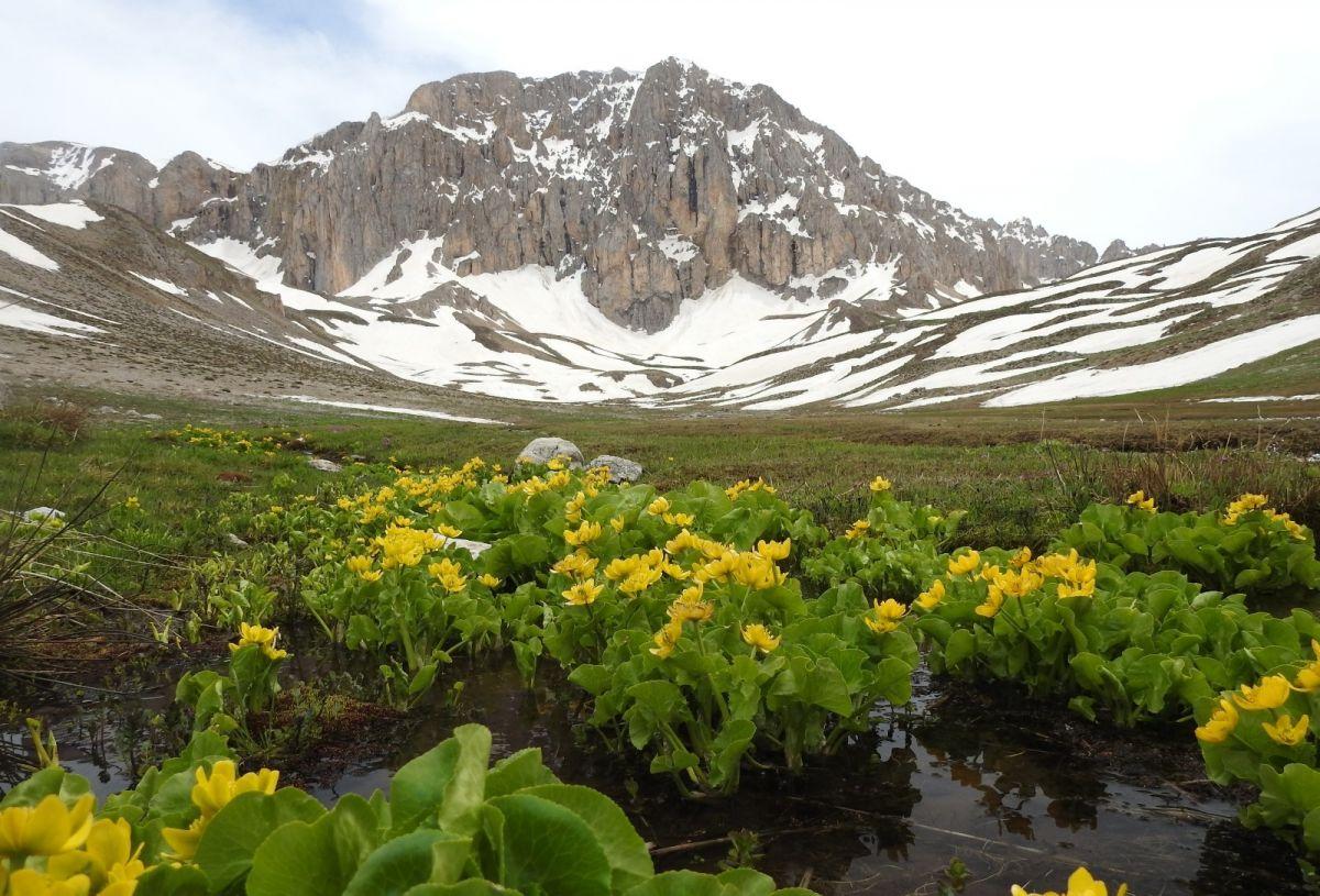 Terörden temizlenen Munzur Dağları, doğaseverleri ağırlıyor #4