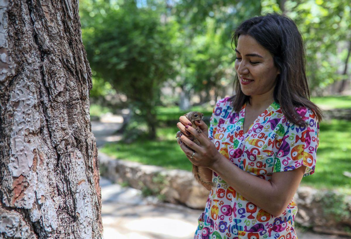 Antalya da sincap büyüten kadın, ağlayarak doğaya bıraktı #3