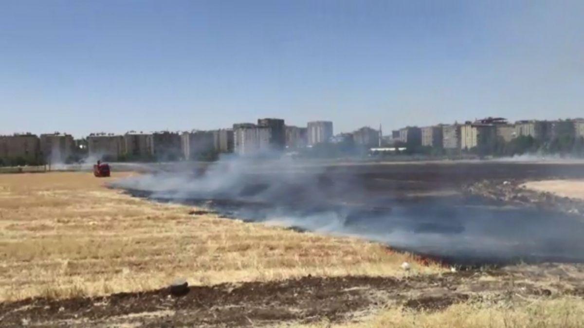 Diyarbakır daki anız yangını kontrol altına alındı #2