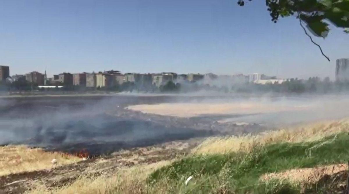Diyarbakır daki anız yangını kontrol altına alındı #3