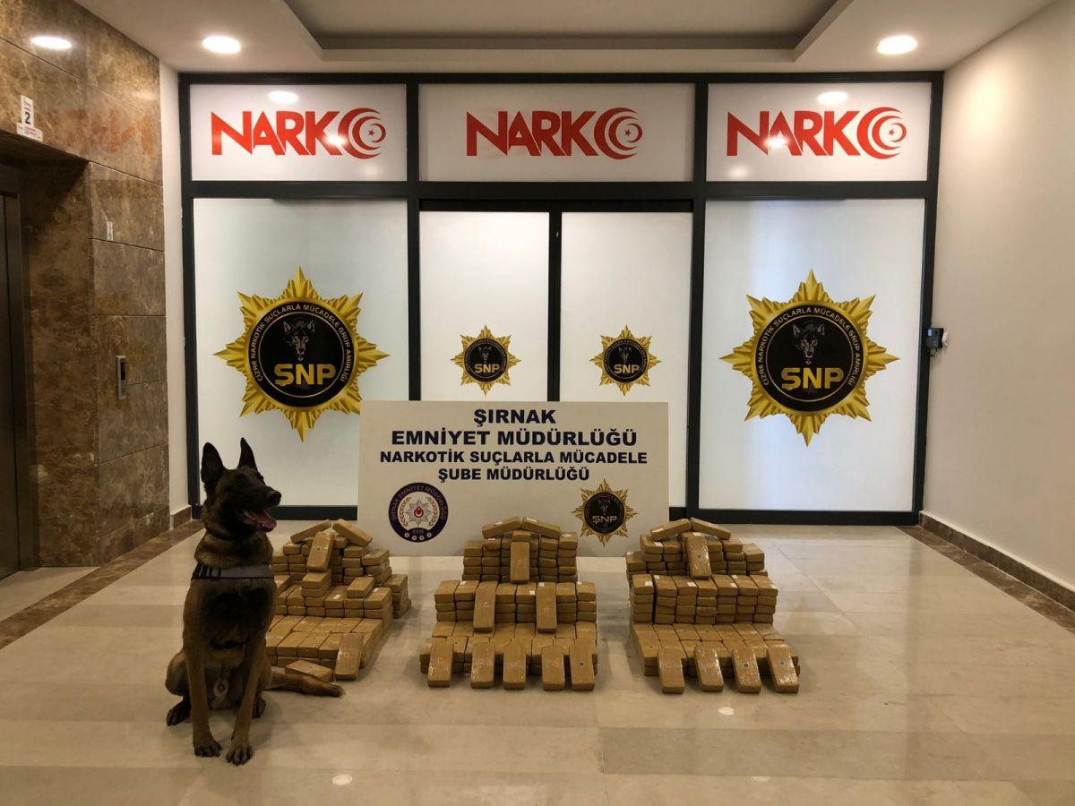 Şırnak genelinde kaçakçılık operasyonu: 68 gözaltı #1