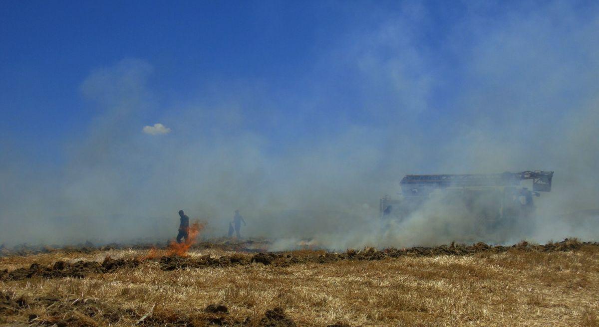 Gaziantep te 70 dönümlük ekili tarla yandı #4