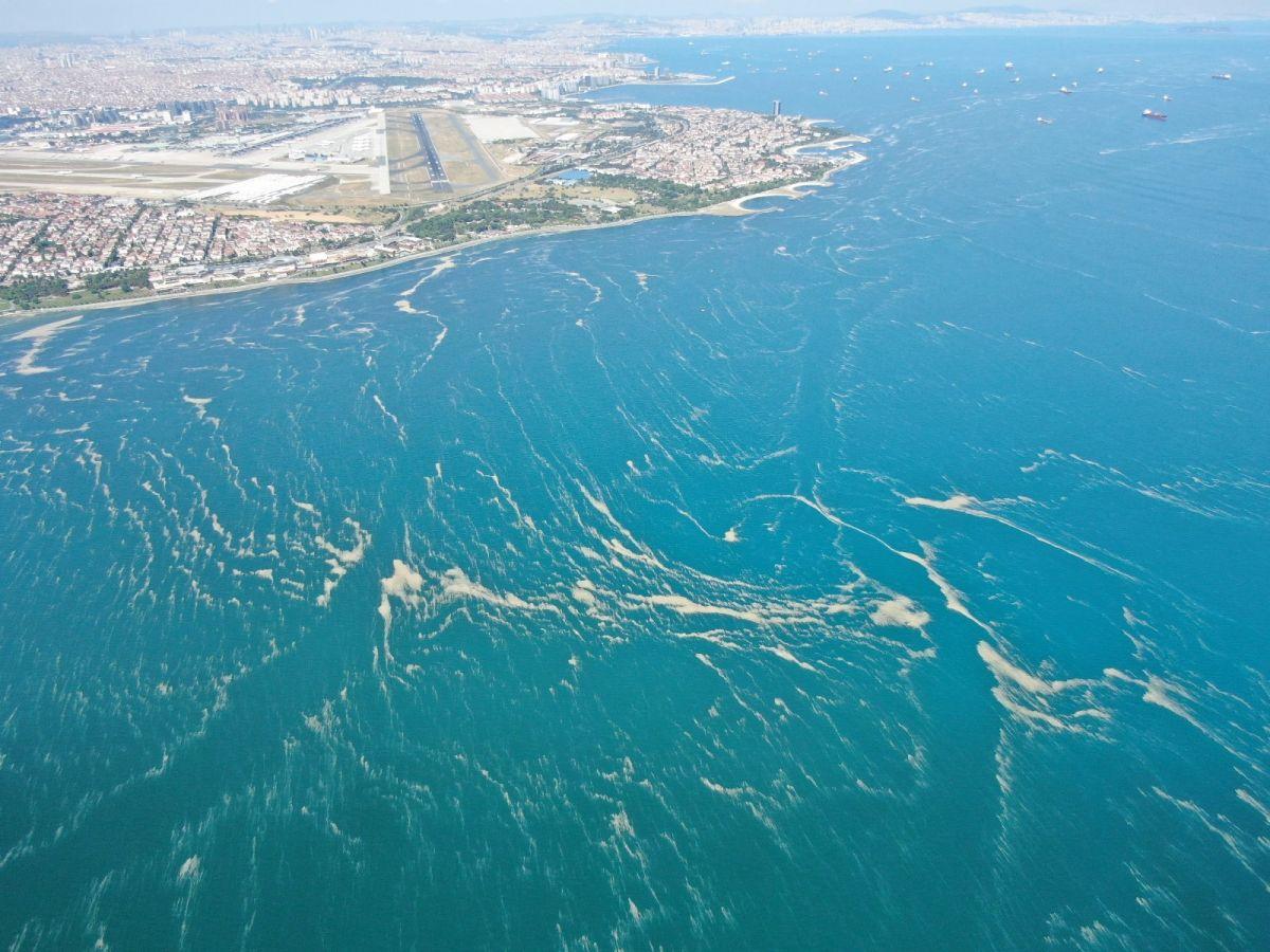 Deniz salyası bu kez Bakırköy kıyılarını sardı #5