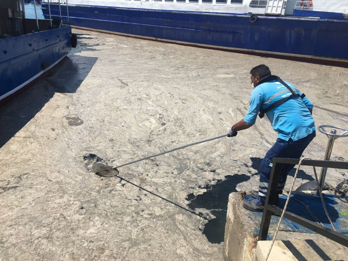 Bostancı'da müsilaj temizliği  #4