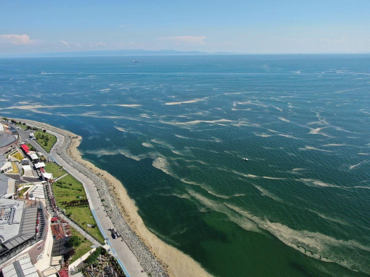 Deniz salyası bu kez Bakırköy kıyılarını sardı #12