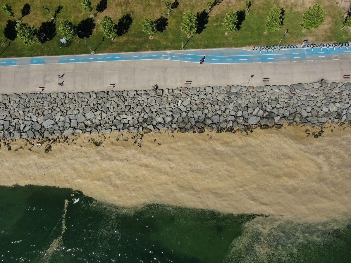 Deniz salyası bu kez Bakırköy kıyılarını sardı #8