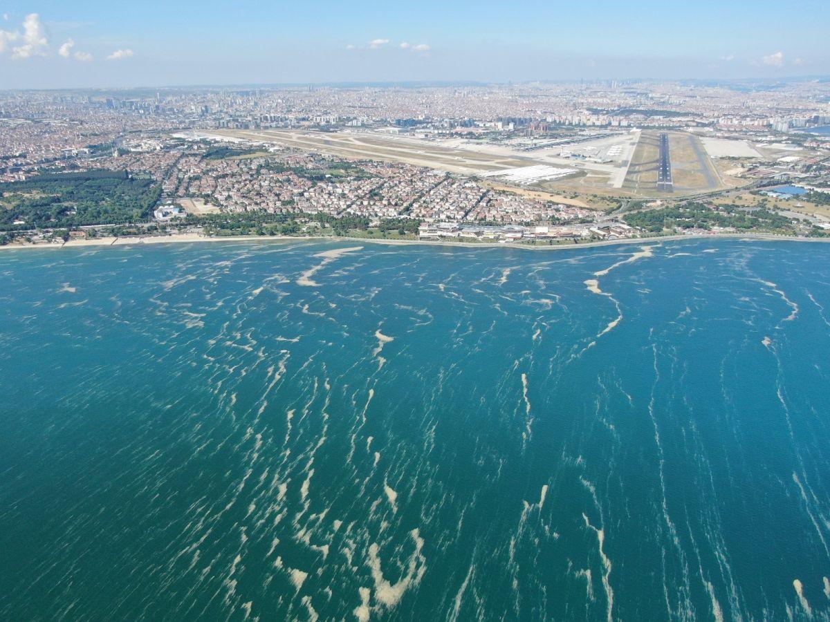 Deniz salyası bu kez Bakırköy kıyılarını sardı #4
