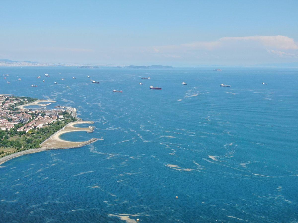 Deniz salyası bu kez Bakırköy kıyılarını sardı #2