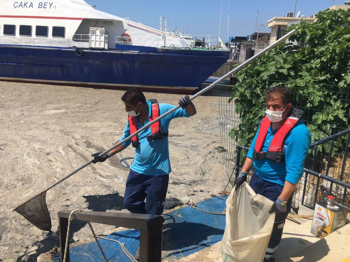 Bostancı'da müsilaj temizliği  #3