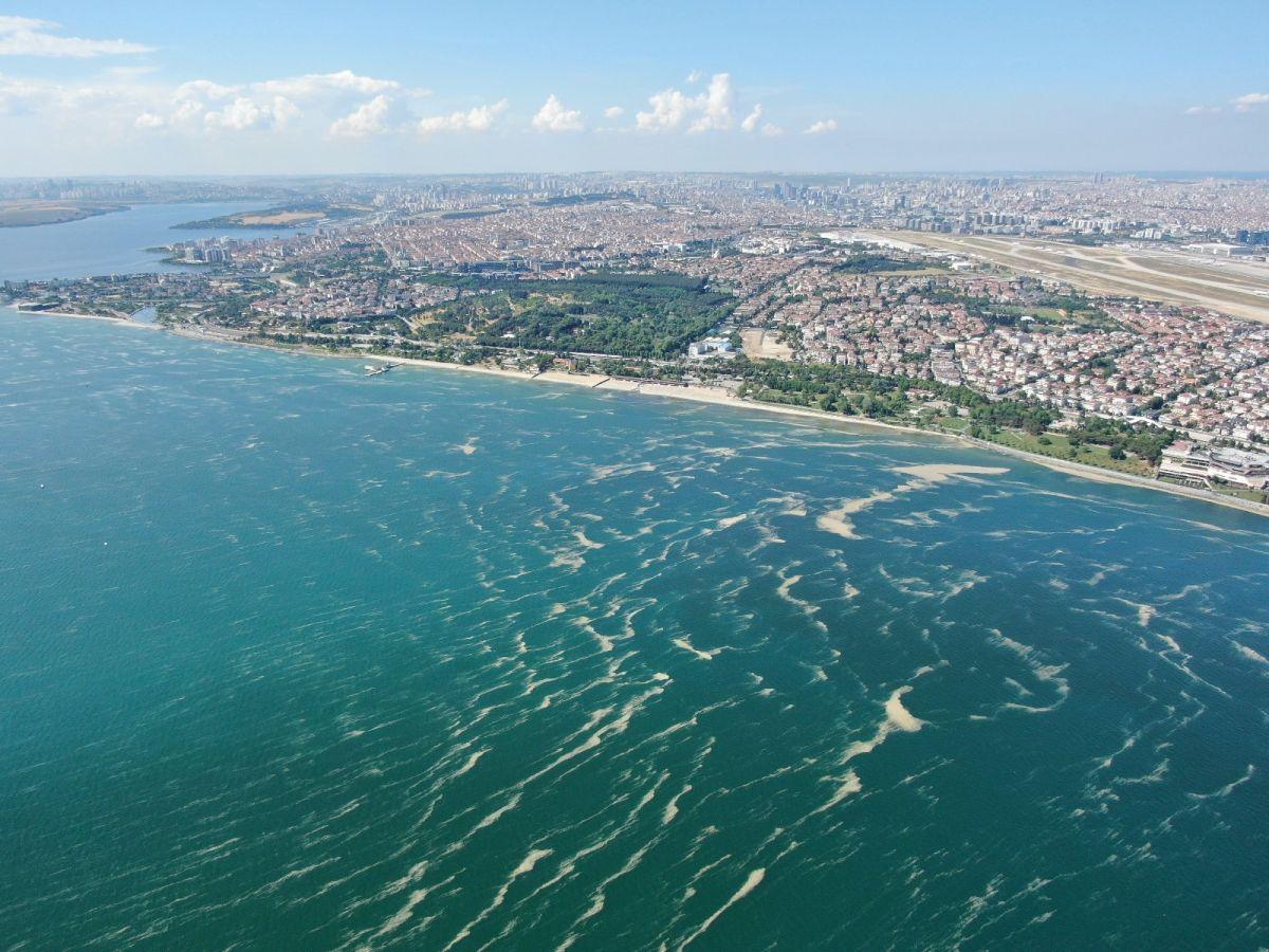 Deniz salyası bu kez Bakırköy kıyılarını sardı #3