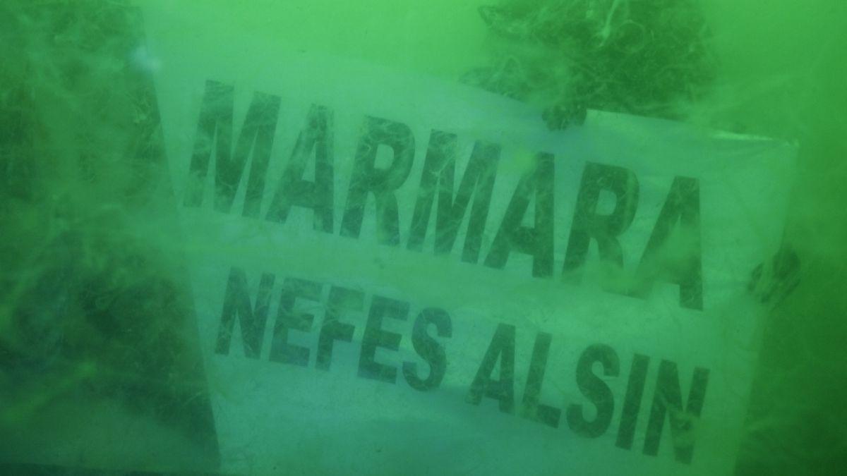 Kocaeli de dalgıçlar, 15 metre derinden Marmara Denizi için haykırdı #8
