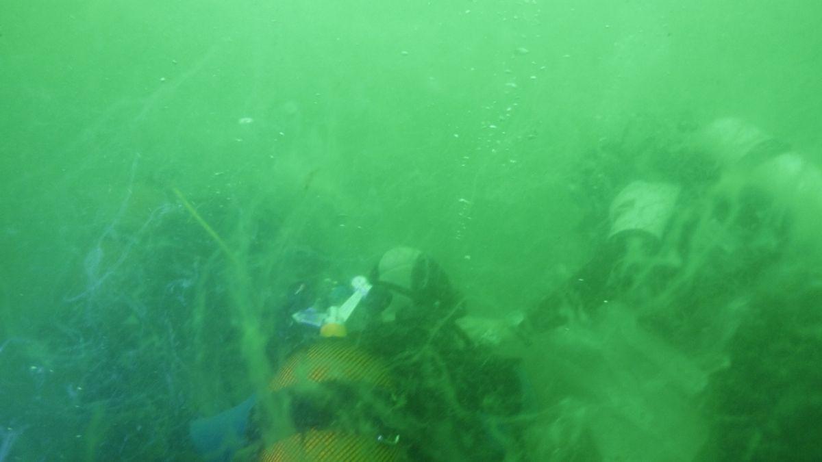 Kocaeli de dalgıçlar, 15 metre derinden Marmara Denizi için haykırdı #4