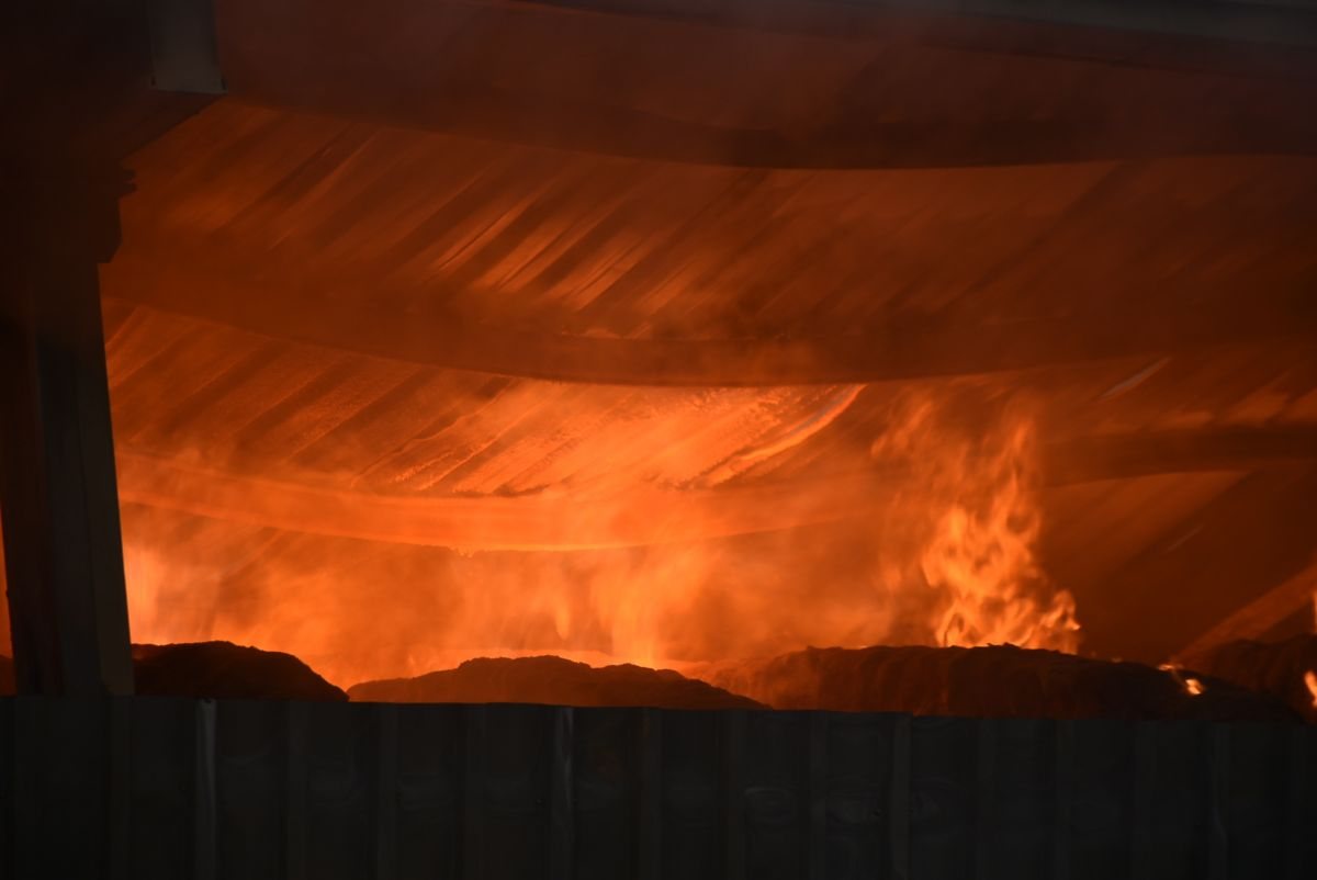 Kırklareli de binlerce büyükbaş hayvanın bulunduğu çiftliğin yem deposu yandı #4