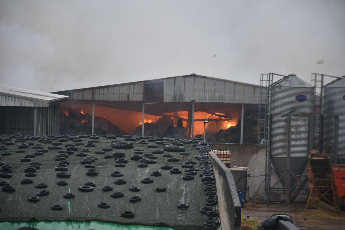 Kırklareli de binlerce büyükbaş hayvanın bulunduğu çiftliğin yem deposu yandı #3