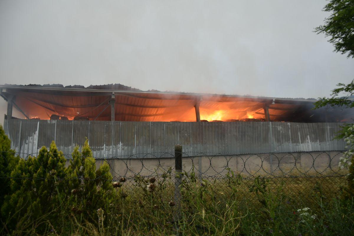 Kırklareli de binlerce büyükbaş hayvanın bulunduğu çiftliğin yem deposu yandı #1