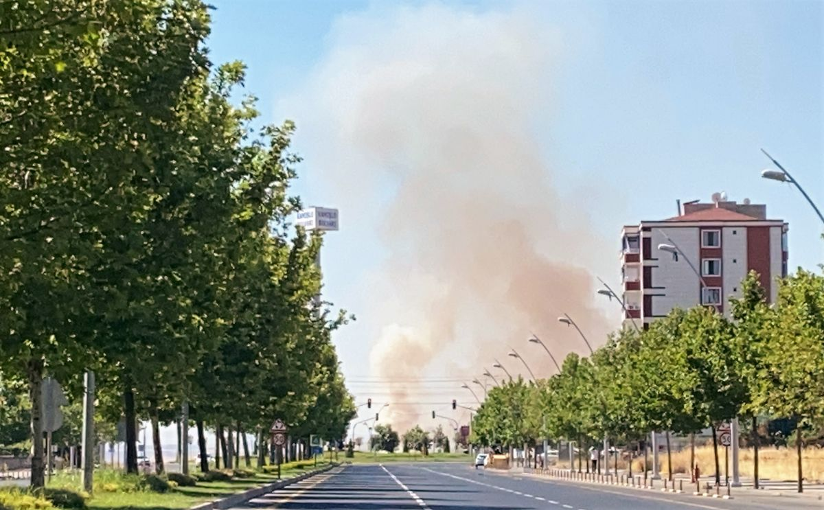 Diyarbakır da havalimanı yakınında anız yangını #8