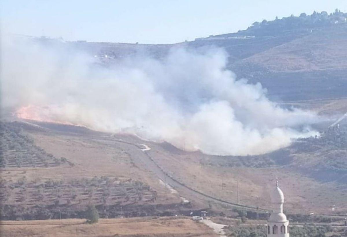 Yahudi yerleşimciler, Batı Şeria'da Filistinlilerin tarım arazisini yaktı #1