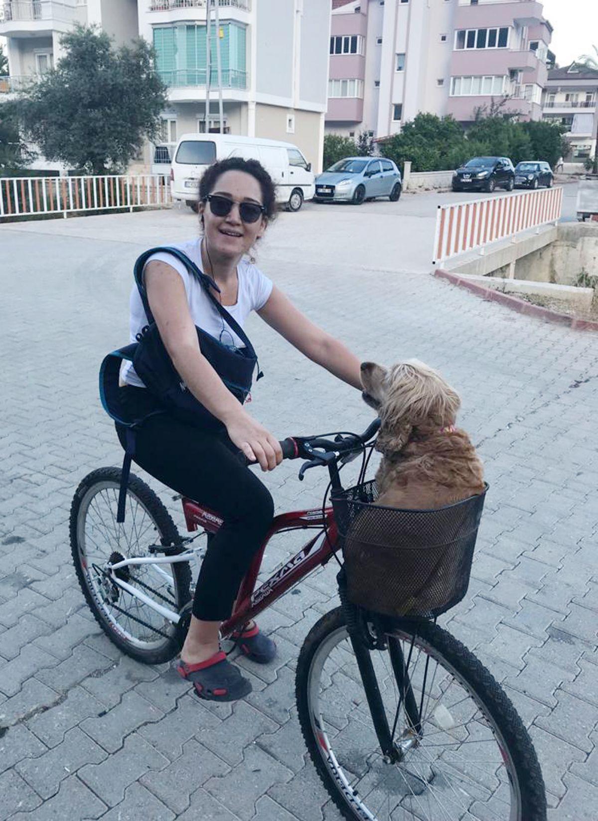 Antalya daki köpek, artık yaşamadığı evden uzaklaştırıldı #1