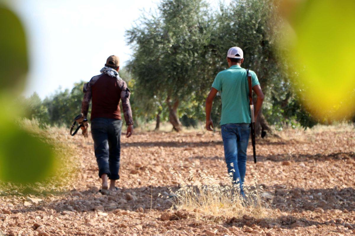 Gaziantep te bekçiler, silahla Antep fıstığı nöbeti tutuyor #7