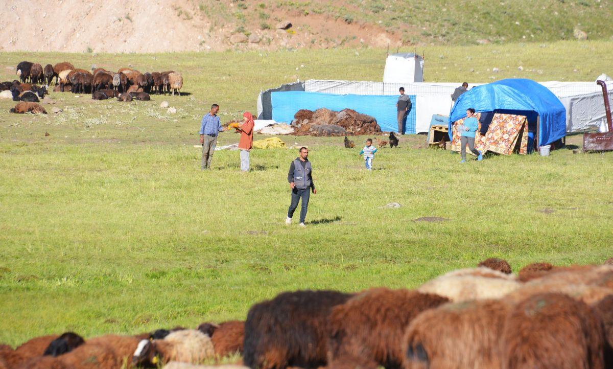 Erzurum da çoban sıkıntısı: 7 bin lirayı beğenmiyorlar #5