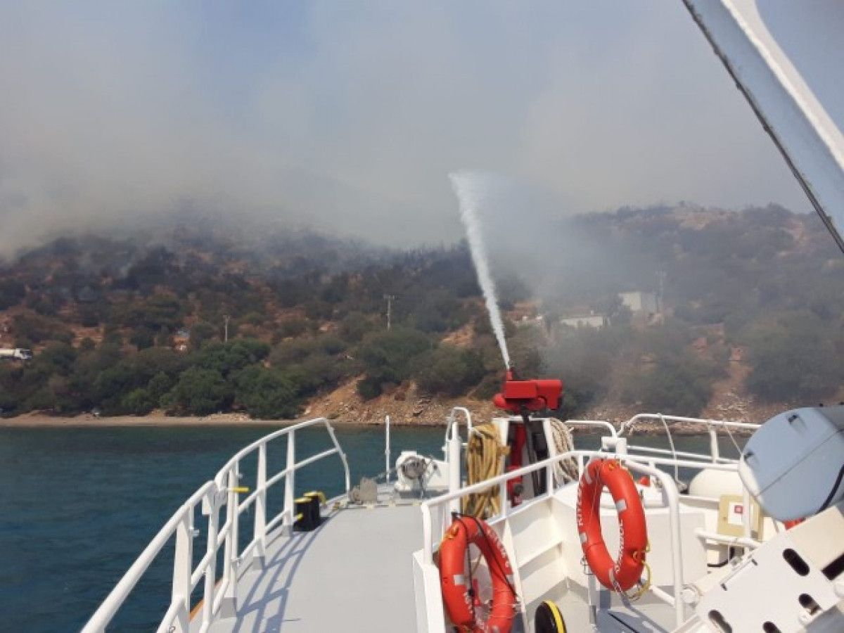 Bodrum da orman yangını #1